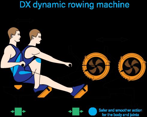 Oartec DX Dynamic Illustration